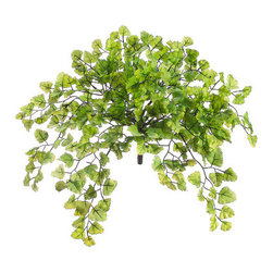 Silk Plants Direct - Silk Plants Direct Maidenhair Fern Bush (Pack of 24) - Pack of 24. Silk Plants Direct specializes in manufacturing, design and supply of the most life-like, premium quality artificial plants, trees, flowers, arrangements, topiaries and containers for home, office and commercial use. Our Maidenhair Fern Bush includes the following: