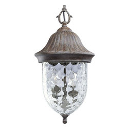 Progress Lighting - Progress Lighting Coventry Traditional Outdoor Hanging Lantern X-78-9255P - The Conventry traditional outdoor hanging light will add subtle elegance to your patio or balcony. This one-light chain hung lantern with optic Hammered Clear glass compliments the new Fieldstone finish.