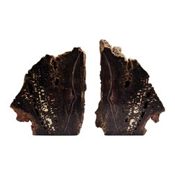"Petrified Wood Bookends S/2 - Beautiful pair of petrified wood bookends. Dark chocolate brown with streaks of white and gray. One side highly polished, rough outside edges have sparkling crystals scattered all over. Each piece is about 6-7"" tall, 5"" wide and 3"" thick. Felt attached to the bottoms."