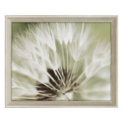 Paragon - Dandelion I - Framed Art - Each product is custom made upon order so there might be small variations from the picture displayed. No two pieces are exactly alike.