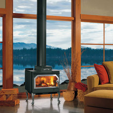 Freestanding Stoves by Concept Builders, Inc.