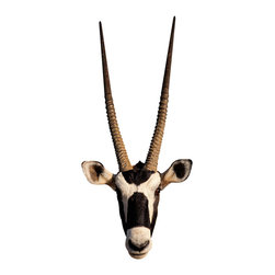 Walls Need Love - Long Horned Antelope Mount Decal - Antelopes are graceful and built for speed, but with these long horns, this deer-like creature seems more show than style. Gaze at one upon your wall with this realistic decal — way cheaper and more PC than tracking one down on safari!