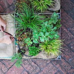 Fairmount Tiles - FAIRMOUNT Living Tiles can be used as a low-maintenance, lightweight green roof or an instant backyard.