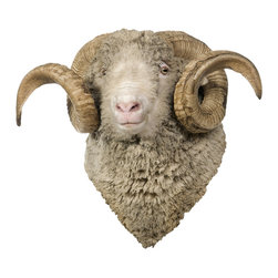 Walls Need Love - Sheep Mount, Adhesive Wall Decal - So soft and wooly-looking, you can almost feel it, this realistic sheep decal will have you reaching out to give it a pat on the head. With spiraling horns and a tufted coat, your new farmyard friend will fit right into your rustic decor. It's sure to make a memorable impression in the cabin, country house, or right at home.