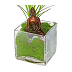 """Luludi Living Frames Buddha Sienna - Peace comes from within. Do not seek it without. """" buddha, our buddha terrariums are unique living frames thatwill help balance your mind with peaceful thoughts and inspire you on a meditation path to enlightenment. Place them in central areas of your home or office for daily inspiration to achieve peace and good life. , also available in the following buddha colors:, black, cobalt, sienna(shown with moss, pebbles and air plant), umber, available as shown or may be custom-tailored:, contact us for alternate sand color and pebble combinations available, dimensions: 4"""" height x 4"""" width x 4"""" length, weight (approx): 3 lbs, buddha statues made of resin, buddha meditation poses may vary, our terrariums are unique landscapes so finished pieces may vary, Suggestion for care:, no direct sun required, moss requires no care if it becomes dry and brittle mist with water, mist once per week remove air plant first, mist and allow to dry before replacing in terrarium, upon receipt soak air plant in bowl of water for 30 minutes, allow to dry then place plant in terrarium"""