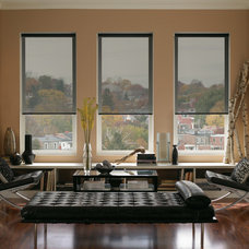 Contemporary Roller Shades by Ruffell & Brown Window Fashions