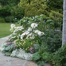 Traditional  by Glenna Partridge Garden Design