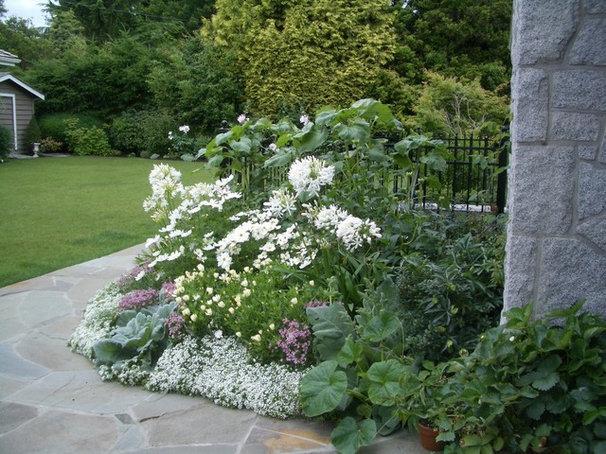 Traditional  by Glenna Partridge Garden Design