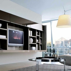 Modern Rendering by Dayoris Custom Woodwork