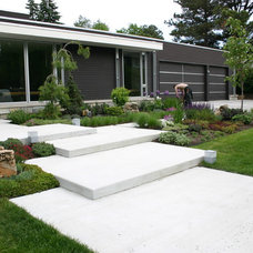 Contemporary Landscape by Phillips Garden