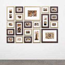 Modern Frames -