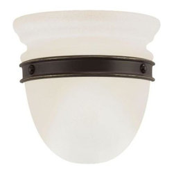 Sea Gull Lighting - Sea Gull Lighting Ambiance Trenton 1-Light Transition Antique Bronze Wall Sconce - Shop for Lighting & Fans at The Home Depot. The Sea Gull Lighting Trenton one light transition wall sconce in antique bronze provides abundant light to your home, while adding style and interest. Trenton features pendant glass, wall sconces and directional lighting in a charmingly rustic bronze finish with ember glow glass. Halogen bulbs provide generous illumination without overwhelming.