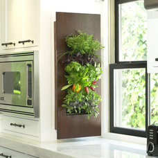 Modern Food Containers And Storage by Urban Zeal Planters