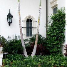 Mediterranean Windows And Doors by Palm Beach Window & Door