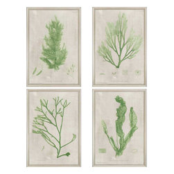 Paragon - Seaweed PK/4 - Framed Art - Each product is custom made upon order so there might be small variations from the picture displayed. No two pieces are exactly alike.