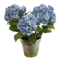 Jane Seymour Botanicals - 3-Stem Hydrangea, Potted - Enjoy the spoils of gardening without any of the dirty work. This beautiful, blue permanent hydrangea plant in a weathered terra-cotta pot looks just like the real thing, and it even comes with faux soil for an extra splash of realism.