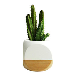 "Geometric Succulent Cactus Planter // White + Wood Colorblock - This mini hand painted planter is perfect for succulent cuttings, small cacti or other mini soil based plants. The 2 1/2"" wood planter is great for a desk, windowsill or tabletop accent. The planting hole is approximately 1 1/4"" deep by 1 1/2"" wide. Also, great for air plants!"