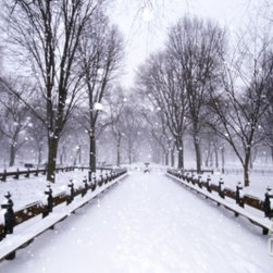 Central Park in winter -