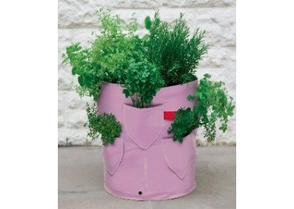 eclectic indoor pots and planters by Garden Beet