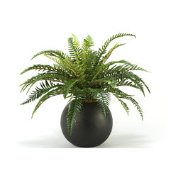 D&W Silks - D&W Silks Fern in Resin Ball Planter - Set in a contemporary resin ball planter, this fern arrangement is a modern take on a classic piece used often in home or office design. Lightly fluff out the fern to create a life-like accent that requires no care or maintenance. Comes assembled as pictured and will maintain its color and shape for years to come.
