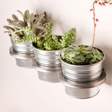 Contemporary Indoor Pots And Planters by Poketo