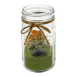 luludi living art - Mason Jar Zen Garden I - Beautiful glass mason jar garden, perfect for the holidays.