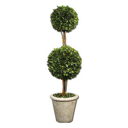 Uttermost - Uttermost Two Sphere Topiary Preserved Boxwood 60106 - Natural�evergreen�foliage preserved whilefreshly�picked, looks and feels like living boxwood. Double spheres arranged on�woodentwigs, potted in a mossy�stone�finished terracotta planter.