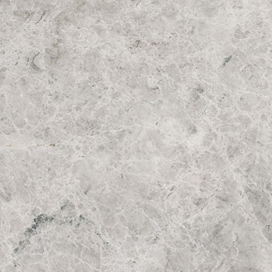 Silver Shadow Polished Tile - Silver Shadow Polished