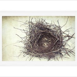 "Lupen Grainne Framed Print, Nest, Mat, 28 x 42"", White - This is an image of an abandoned nest the photographer found in an enormous passionflower vine. The photo is at once charming and haunting, conjuring up thoughts of flight and home. 13"" wide x 11"" high 20"" wide x 16"" high 42"" wide x 28"" high Alder wood frame. Black or white painted finish; or espresso stained finish. Beveled white mat is archival quality and acid-free. Available with or without a mat. {{link path='/shop/accessories-decor/pb-artist-gallery/artist-gallery-lupen-grainne/'}}Get to know Lupen Grainne.{{/link}}"
