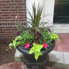 Traditional Outdoor Pots And Planters by Kim Gamel