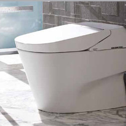 TOTO Neorest 700H Elongated Toilet/Bidet  MS992CUMFG - TOTO Neorest 700H Elongated Toilet/Bidet