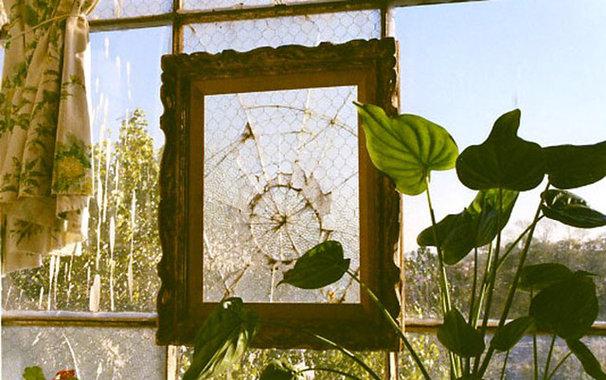 Salvaged Windows