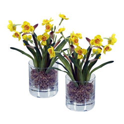 Mini Narcissus in Glass, Set Of 2