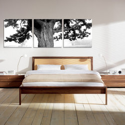 Oak Tree (Black and White) - Copia Art offers affordable three-panel wall art for any type of interior wall space. We design each of our wall pieces by mounting beautiful hi-resolution images to high-quality, solid-wood panels. Our decorative wall-art sets are available in three different sizes and can be hung in commercial and office spaces as well as any area of the home. Panels are designed for durability and moisture resistance. Any piece can hang in bathrooms and kitchens without being damaged by heat and moisture.