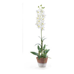 Dendrobium with White Wash Pot Silk Flower Arrangement - Brighten up your living space with this vibrant and cheerful Dendrobium silk arrangement. Standing 25 in tall this beautiful silk arrangement features stalks of delicate Dendrobium blooms and buds. Life like in appearance these stalks boast circular patches of white and green like its natural counter part. It sits in a timeless white wash pot and is a perfect fit for any decor. Height= 25 in x Width= 8 in x Depth= 8 in