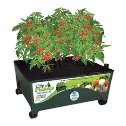 Emsco Group - Emsco Group City Pickers Patio Garden Kit (2340) - Emsco Group 2340 City Pickers Patio Garden Kit