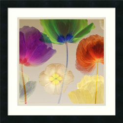 Amanti Art - Robert Mertens 'Poppy Panorama I' Framed Art Print 20 x 20-inch - This richly textured floral artwork by Robert Mertens is sure to grace any room with charm. With the use of rich tones, Mertens brings the poppy alive in vivid, blooming detail.