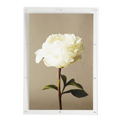 "WHITE ROSE WALL ART - NEW - Although we're not art experts, we're pretty sure the title of this piece should be ""Serenity."" Hang it in the bathroom, where you can ruminate on life's bounty while soaking in the bubbles, or perhaps in the dining room, where its clean, crisp silhouette adds simple sophistication to mealtimes. If you believe your home should be a respite from the chaos of everyday life, a piece of art that echoes the sentiment is a no-brainer addition."