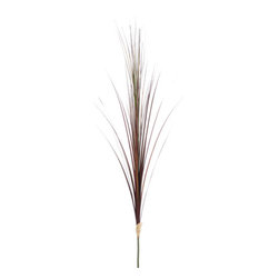 Silk Plants Direct - Silk Plants Direct Grass Plume (Pack of 12) - Green - Silk Plants Direct specializes in manufacturing, design and supply of the most life-like, premium quality artificial plants, trees, flowers, arrangements, topiaries and containers for home, office and commercial use. Our Grass Plume includes the following: