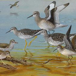 Magic Murals - Shorebirds Painting Wallpaper Wall Mural - Self-Adhesive - Multiple Sizes - Magi - Shorebirds Painting Wall Mural