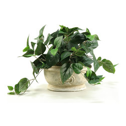 "D&W Silks - Artificial Philo Ivy in Oblong Ceramic Planter - It's amazing how much adding a plant can change the look of a room or decor, but it can be difficult if your space is not conducive to growing plants, or if you weren't exactly born with a ""green thumb."" Invite the beauty of nature into your home without all the upkeep with this maintenance-free, allergy-free arrangement of artificial philo ivy in an oblong ceramic planter. This is not a living plant."