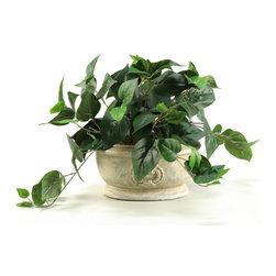 D&W Silks - D&W Silks Philo Ivy In Oblong Ceramic Planter - Philo Ivy Plant