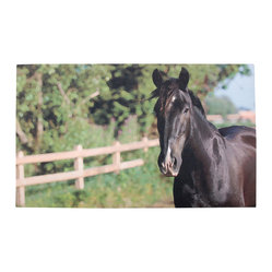 Esschert Design - Printed Doormat - Horse - Got an equine fetish or just love horses? Greet your guests with Black Beauty! This recycled rubber printed doormat is Ecofriendly, it cleans easily and is fun spot to wipe your feet.