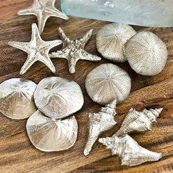 Regina Andrew Decor Set of Assorted Silver Mini Seashells