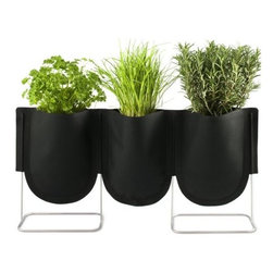 Authentics - Urban Garden Plant Bag Set of 3 by Authentics - The Authentics Urban Garden Plant Bag Set of 3 features a row of Plant Bags suspended by a welded metal stand. Within the bags, waterproof liners, drainage fleece and water-absorbing clay granules maintain an ideal moisture level for plants without water seepage. Keep in a row for growing herbs on a windowsill or arrange in a circle for a decorative floral centerpiece.