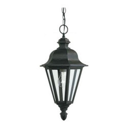 Sea Gull Lighting - Sea Gull Lighting Outdoor Lighting. Brentwood 1-Light Black Outdoor Pendant Fixt - Shop for Lighting & Fans at The Home Depot. The Sea Gull Lighting Brentwood one light outdoor pendant fixture in black enhances the beauty of your property, makes your home safer and more secure, and increases the number of pleasurable hours you spend outdoors. The sensibly styled proportions and accents of Brentwood make it a versatile selection for your home. Clear bulbs are recommended to use for the best aesthetics.