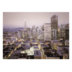Urban Wall Mural - This city mural depicts the iconic San Francisco skyline. As day turns to night the city is illuminated with the Transamerican Pyramid prominently silhouetted.
