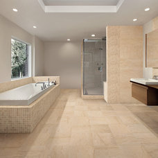 Traditional Floor Tiles by Architectural Ceramics Inc