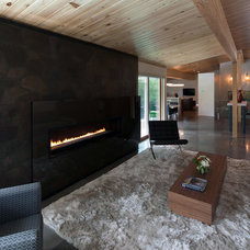 Contemporary Indoor Fireplaces by Spark Modern Fires