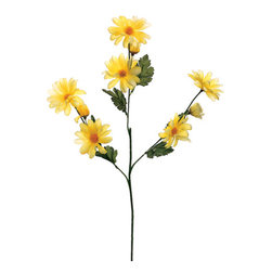 Silk Plants Direct - Silk Plants Direct Daisy (Pack of 12) - Yellow - Pack of 12. Silk Plants Direct specializes in manufacturing, design and supply of the most life-like, premium quality artificial plants, trees, flowers, arrangements, topiaries and containers for home, office and commercial use. Our Daisy includes the following: